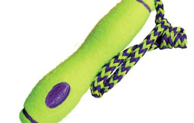 Esempio di giochi per cani con corda