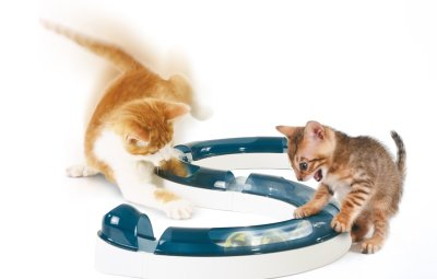 modello di giochi per gatti a percorso con palline