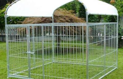 esempio di recinto per cani da esterno
