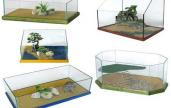 Alcuni esempi di acquario per tartarughe