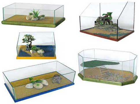 Acquario per tartarughe accessori indispensabili pet for Acquario per pesci