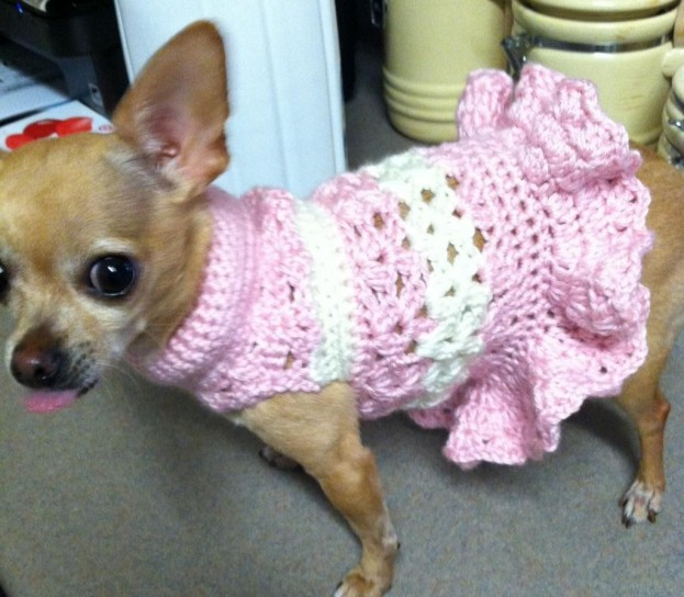 Knitting Pattern For A Small Dog Coat : Cappottini per cani: servono veramente? - Pet Magazine