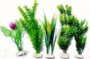 piante per acquario: vere o finte? - pet magazine - Allestimento Acquario Dolce Con Piante Vere