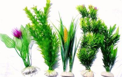un insieme di piante per acquario finte
