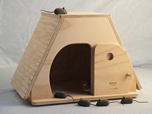 casette per gatti