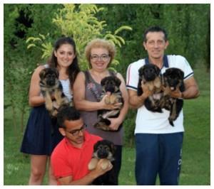 cuccioli-pastori-tedeschi-bologna