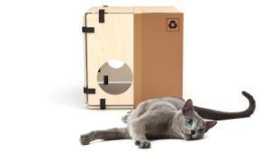 catown_cat_box_gatto_scatola_cartone-1